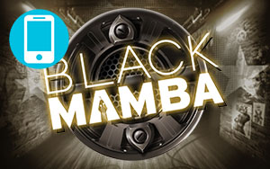 Black Mamba Mobile