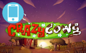 Crazy Cows Mobile