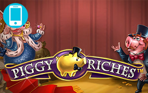 Piggy Riches Touch™